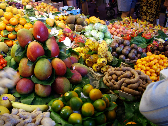 exotic-fruits-2-1562601